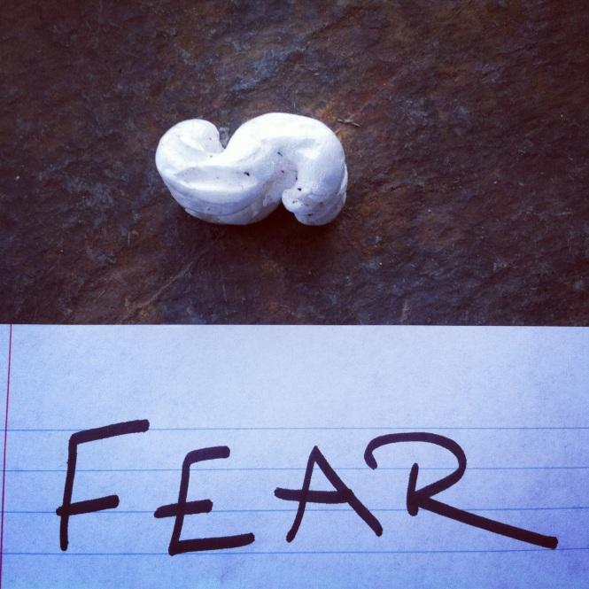 12-23 fear
