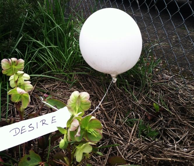 3-31-14 desire balloon